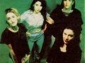 luscious jackson with green background
